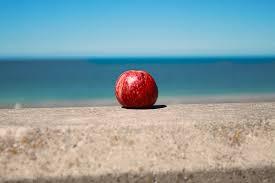 en-la-playa-fruta-para-adelgazar