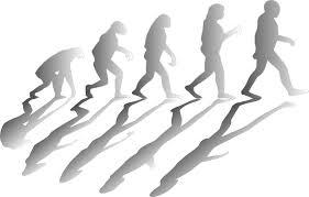evolucion-bajar-de-peso