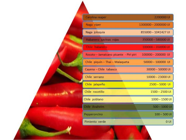 clasificacion de picante.jpg