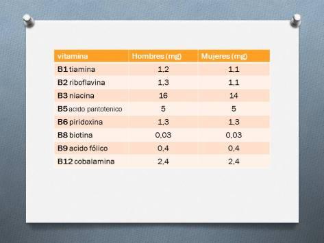 requerimientos vitamina grupo b