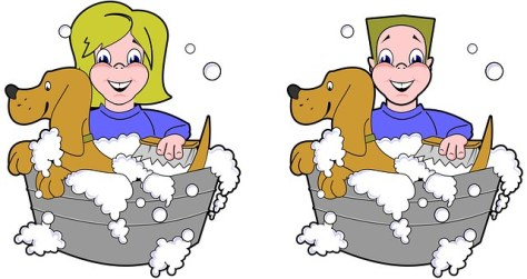baño de mascota